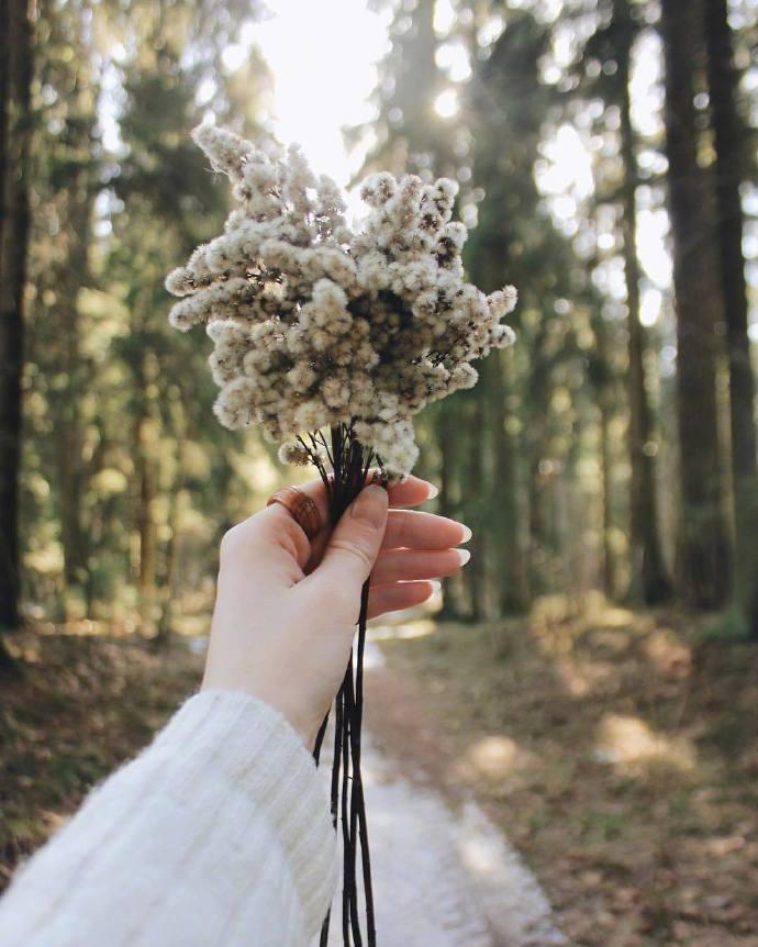九张女生手拿花朵的小清新图片-有意思吧